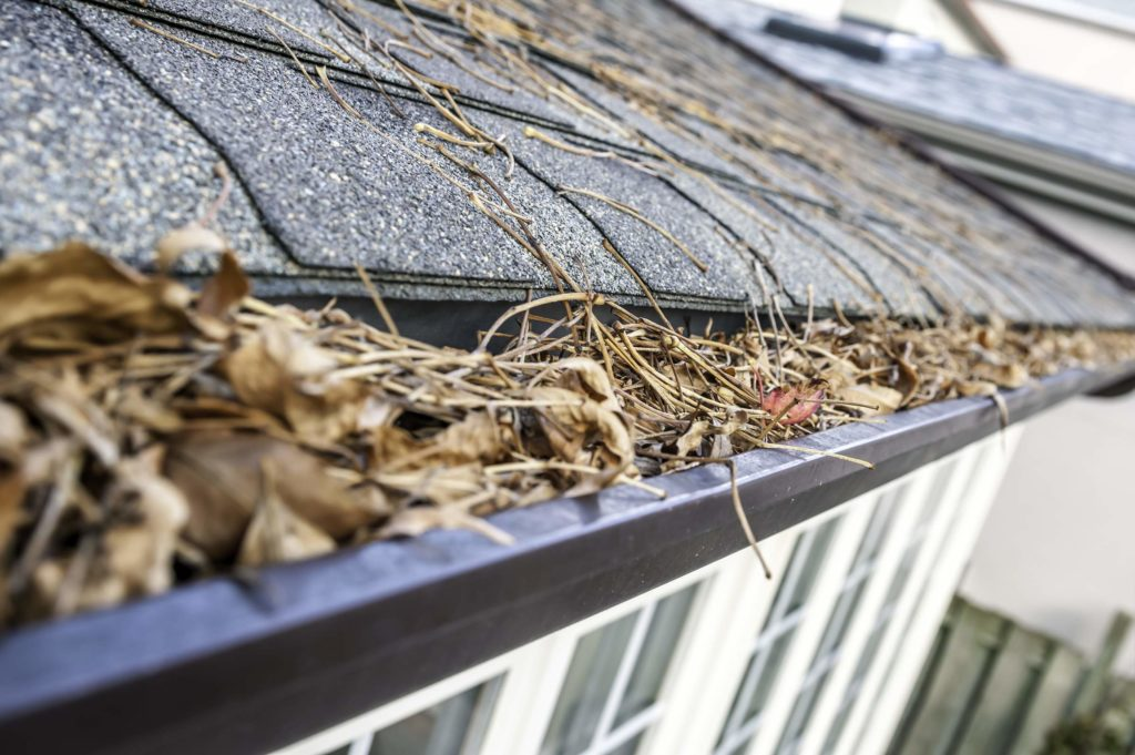 Gutters-cleaning